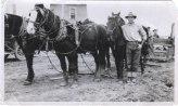 HAMILTON-Claude and Team of horses 1920
